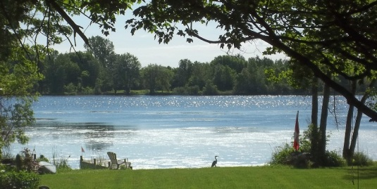 My 'Lake of Shining Waters' , Rideau River